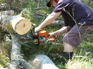 chainsawing 1