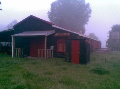 The Woolshed on a misty morning.