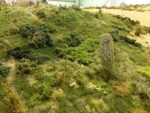 Detail of vegetation.