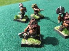 Norse Dwarves 13