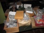 Boxes of Napoleonics
